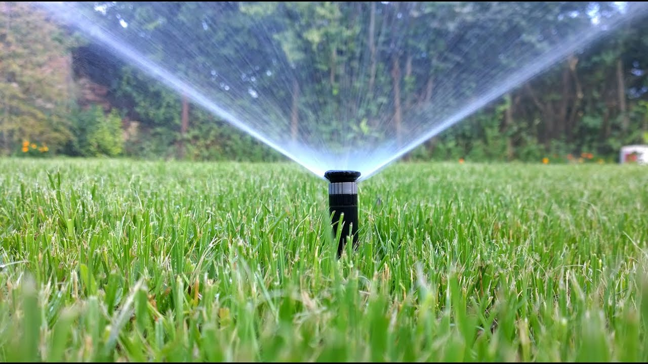 sprinkler  drip irrigation whats  difference