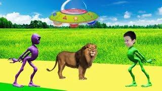 учить животных для малышей - животные для детей - видео развивающее #42