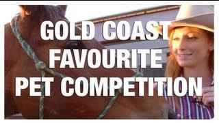 Gold Coast Favourite Pet Competition