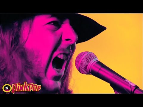 System Of A Down - Chop Suey! live PinkPop 2017 [HD | 1080p]