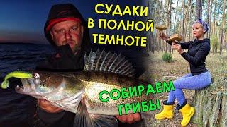 СУДАКИ МОНСТРЫ ИЗ ТЕМНОТЫ КАК ЛОВИТЬ ОСЕНЬЮ Ловля судака на джиг осенью Рыбалка на спиннинг 2021