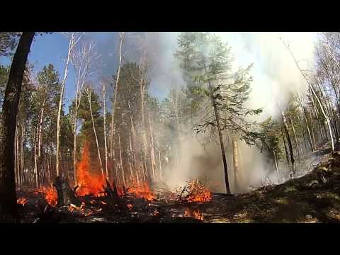 UW-Stevens Point Prescribed Burn Compilation
