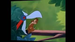Donal duck and 2 chú sóc chuột đáng yêu! Tom Su Phu