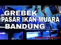 Persiapan Bulan Ramadhan  Kondisi Pasar Ikan Tradisional Muara Bandung  Mp3 - Mp4 Download