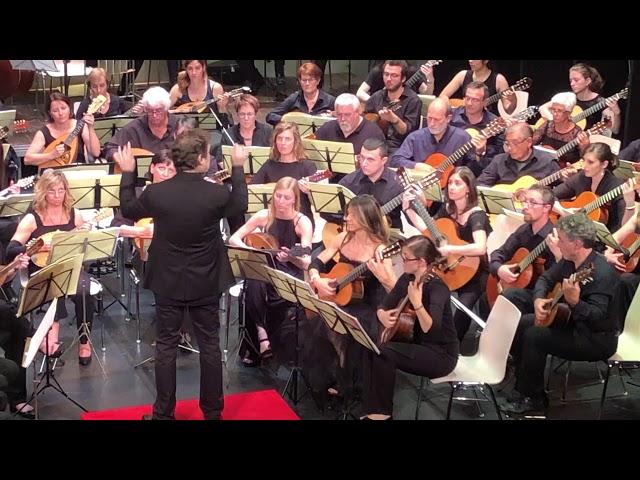 Valzer No.2 - Schostakowick - 100 sfumature di plettro 2019