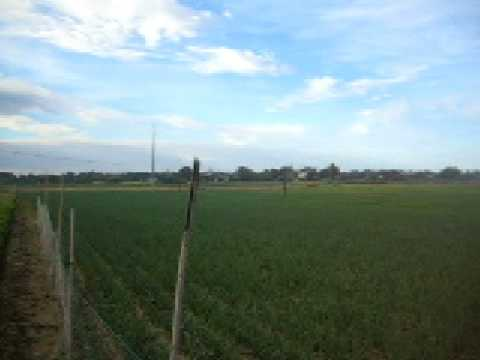 The farmland around the house