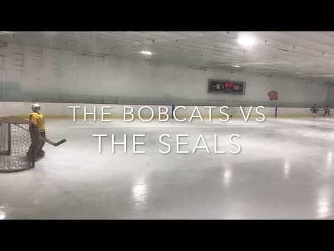 Seals vs Bobcats Dec 17 2017