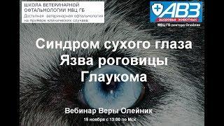 Транспозиция протока слюнной железы при синдроме сухого глаза. Фрагмент.