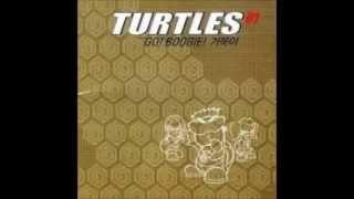 00년대 리믹스 거북이 (korea pop millennium remix Turtles)