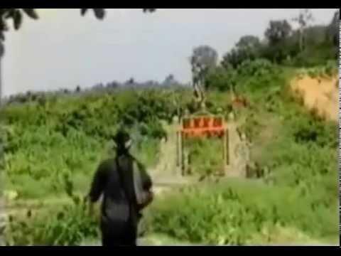 Phạm Công Cúc Hoa - Bích Phượng