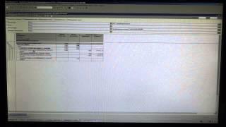 Доработка 1с - пояснение(, 2014-11-24T10:17:21.000Z)