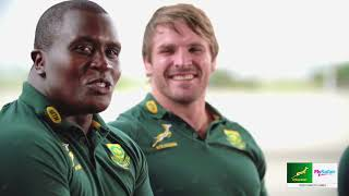 You asked, they answered - Springboks Q&A