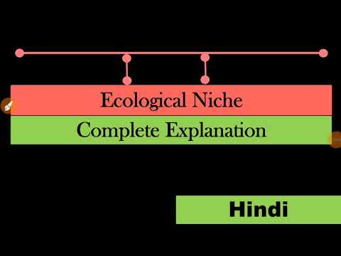 Ecological Niche | Ecology And Environmental Sciences| Mind Mapping