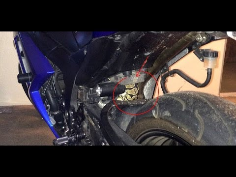Thumbnail: Snake found inside Motorcycle