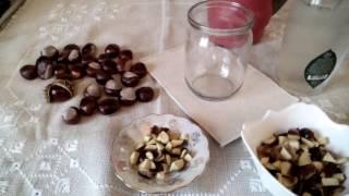 видео Лечебные свойства конского и съедобного каштана