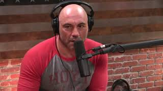 Joe Rogan on the Violence in Chicago