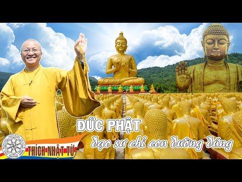 Đức Phật - Đạo sư chỉ con đường đúng - TT. Thích Nhật Từ