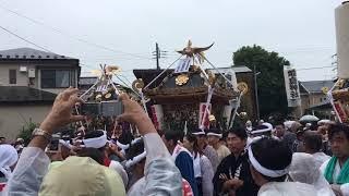 2018年 前鳥神社御鎮座千六百五十年式年大祭 奉祝祭三基神輿お発ち thumbnail