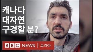 집콕의 순간, 캐나다 대자연 보여준 틱톡커 - BBC …