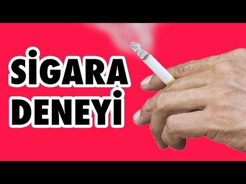 Elektrik Süpürgesine Sigara İçirdik - Sigaranın Zararını Görün