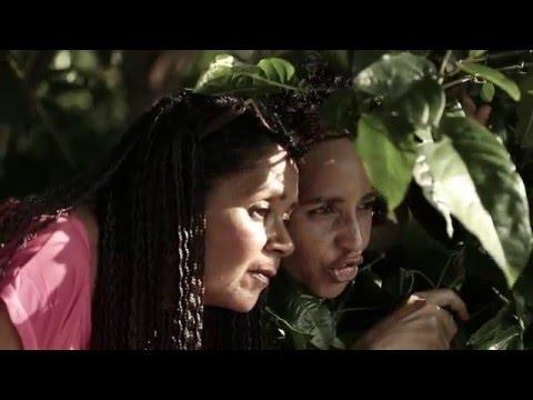Trailer do filme Jardins de Pedra