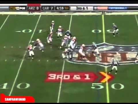 Larry Fitzgerald vs Panthers Divisional Playoffs (NFL 2008-09)
