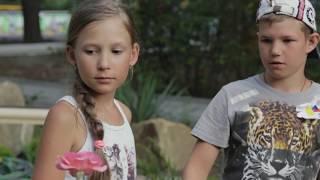 Фильм Чароит и Роза. Автор истории - Лиза УДРАС. Лагерь Нива, 2 смена, 2017 год
