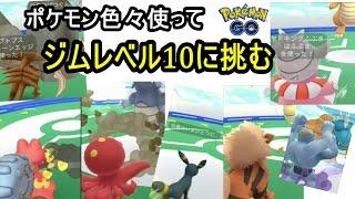ジムレベル10に挑戦!(登場ポケモン盛りだくさん) thumbnail