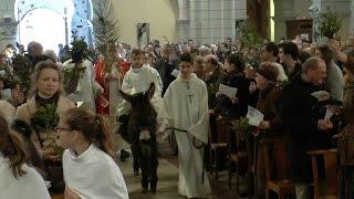 Procession et Bénédiction des Rameaux