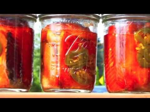 Salmon Canning
