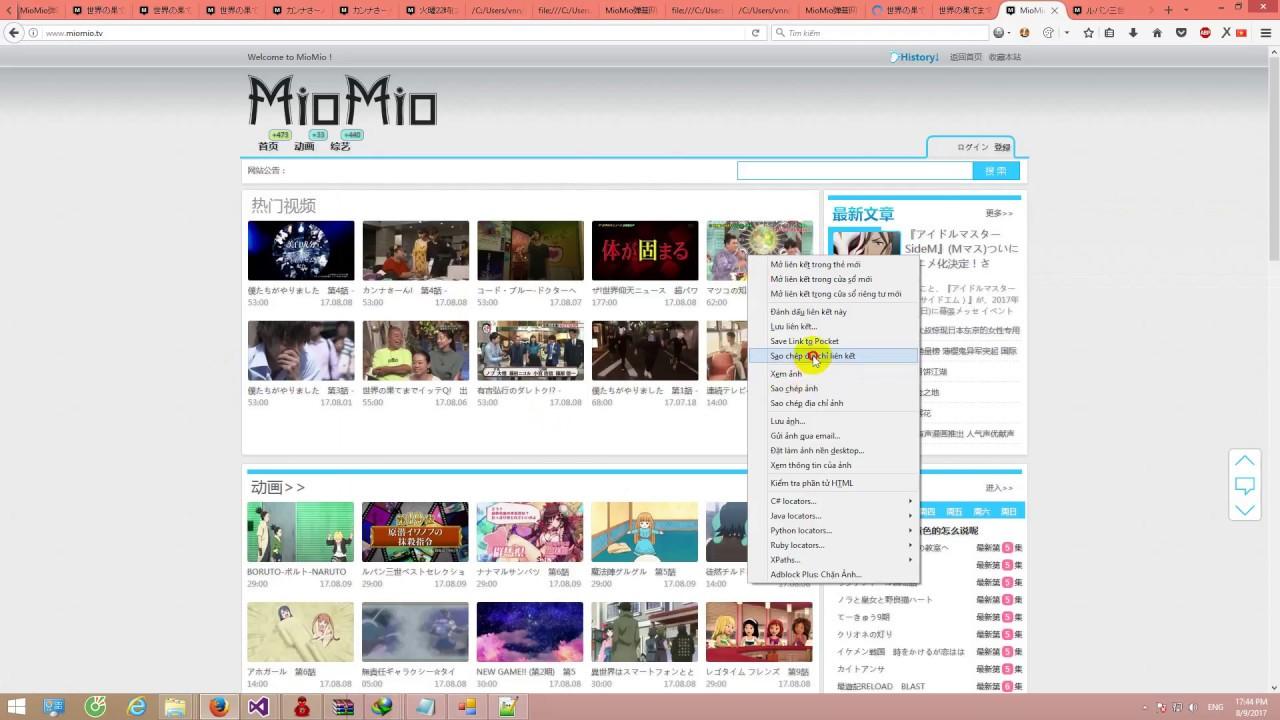 Phần mềm hỗ trợ download video hàng loạt