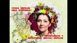 Трансляция 4 - полная версия /Лена Воронова