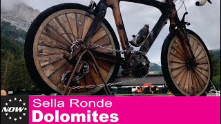 180625 Dolomotes