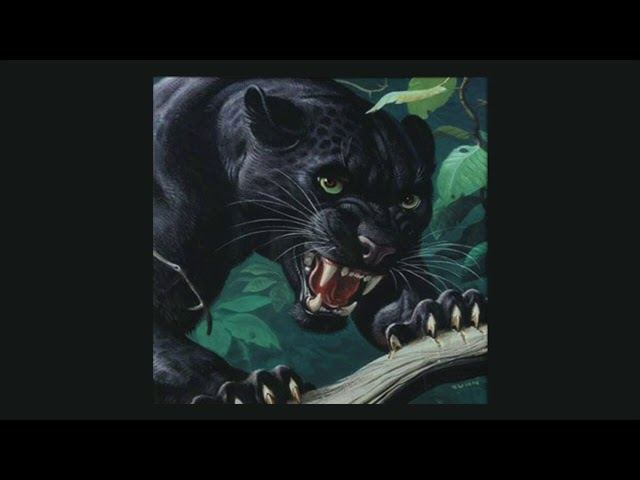 Travis Scott x Drake Type Beat -