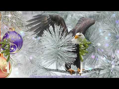 Поздравление С Новым годом! С годом Парящего Орла! - Видео на ютубе