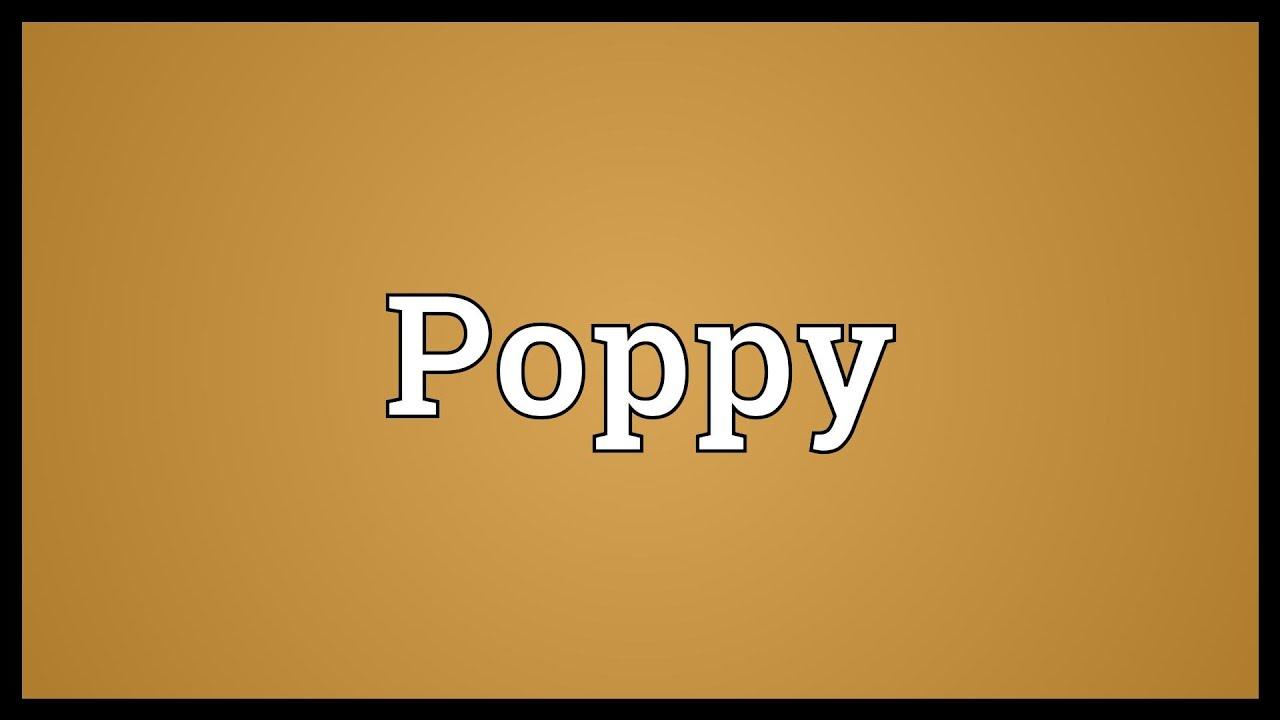 Poppy Meaning - YouTube