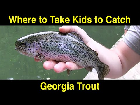 The Best Place To Take Kids Trout Fishing In Georgia
