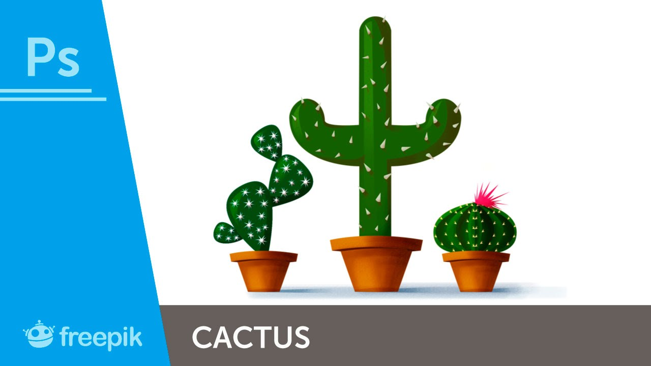 How To Create Different Cactus Illustrations In Adobe
