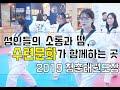 성인태권도 스피드 발차기(Speed Kick)! 서울의정부 청춘태권도 Korea Adult Taekwondo center