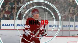NHL 09 pc with lots of mods 2