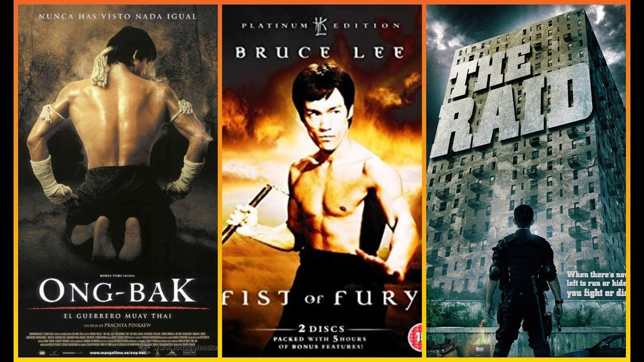 Download Top 20 Martial Arts Movies Of All Time  !