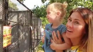 Говорящие животные в зоопарке! Видео для детей! Talking animals in the Zoo!