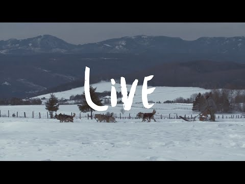 Charlevoix Tourism - Live (winter)