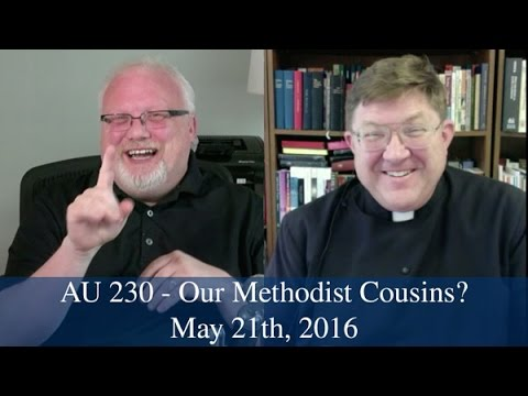 AU 230 - Our Methodist Cousins?
