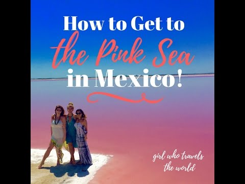 The Pink Sea In Mexico
