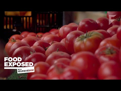 The Real Effect of GMOs | Food Exposed with Nelufar Hedayat