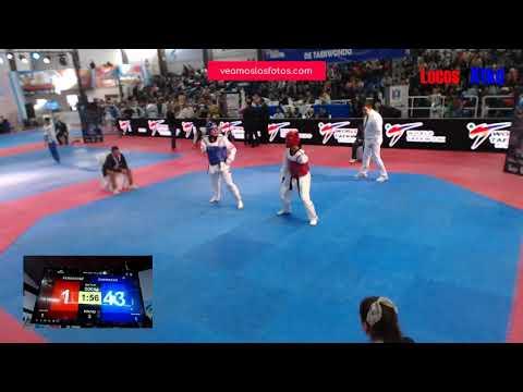 Torneos de Taekwondo Argentina transmitidos por Streaming VLF TV