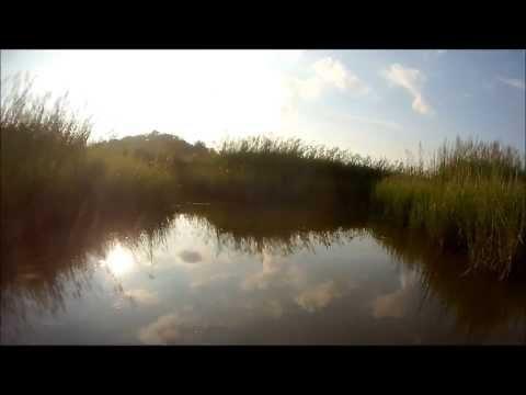 Nansemond River Creek Run in a Flat Bottom Jon Boat - Suffolk, Virginia Aug 2013