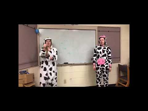 Molly the Moo Cow Cheer