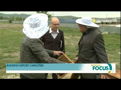 Kazakhstan exports honey to China